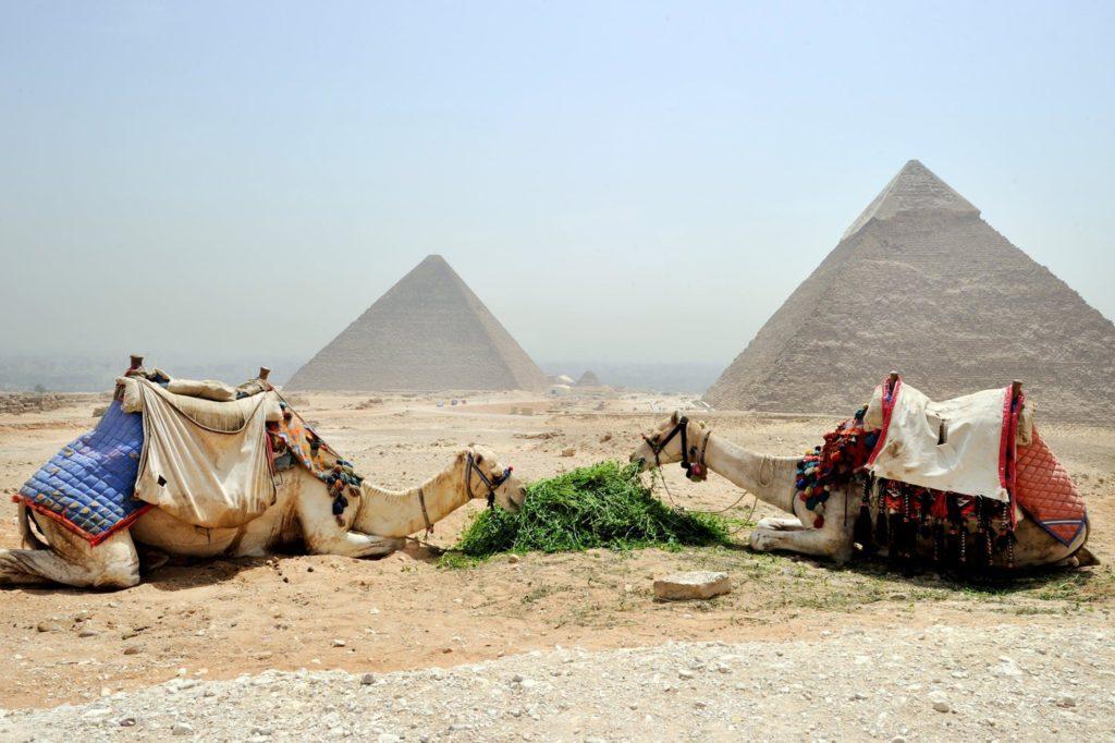 Cheap First Class and Business Class Flights to Cairo 1